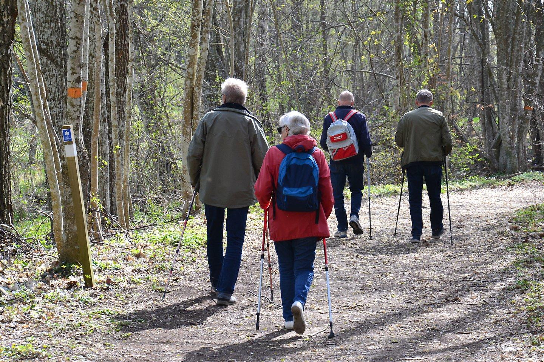 krokek mötesplatser för äldre